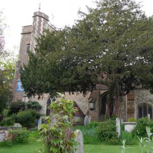 St. Mary's, Barnes